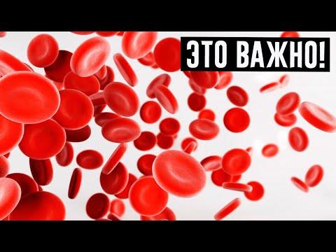 Какие показатели крови сигнализируют, что есть проблемы!