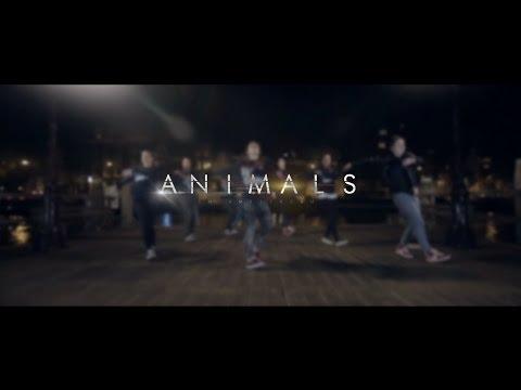 Martin Garrix - Animals | Choreography Andreï Trehet | ALFILMS | LHC