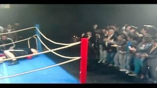 [Alemin Krali] Cüce Boxer