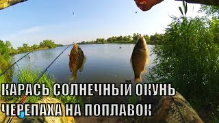 Рыбалка на  КАРАСЯ. Солнечный окунь Черепаха на Удочку