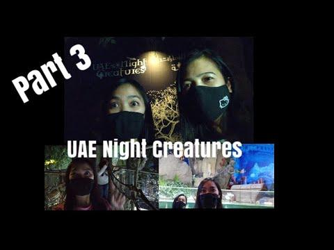 DUBAI AQUARIUM & UNDERWATER ZOO PART 3