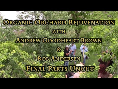 Organic Orchard Rejuvenation with Andrew Goodheart Brown & Bob Anderson Final Parts UNCUT