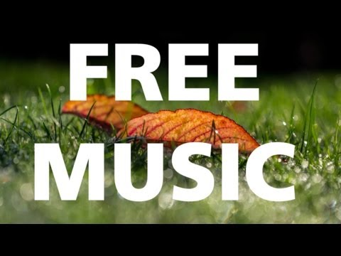 Ludwig van Beethoven  Moonlight Sonata CLASSICAL  DARK free & no copyright