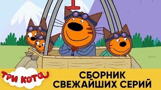 Три Кота | Сборник свежайших серий | Мультфильмы для детей