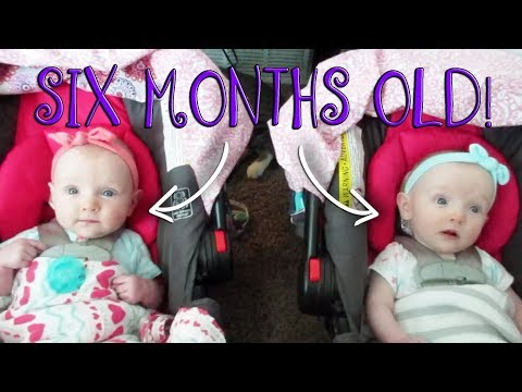 THE MUCHKINS ARE 6 MONTHS OLD! (Day 313)