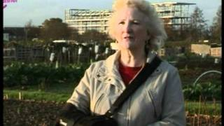 HUNTINGTON'S DISEASE ALLOTMENT SOUTHEND - FILM. 3 mins.