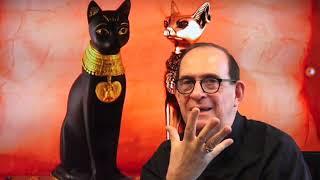 Cual es el misterio de los gatos y que beneficios o malefici...