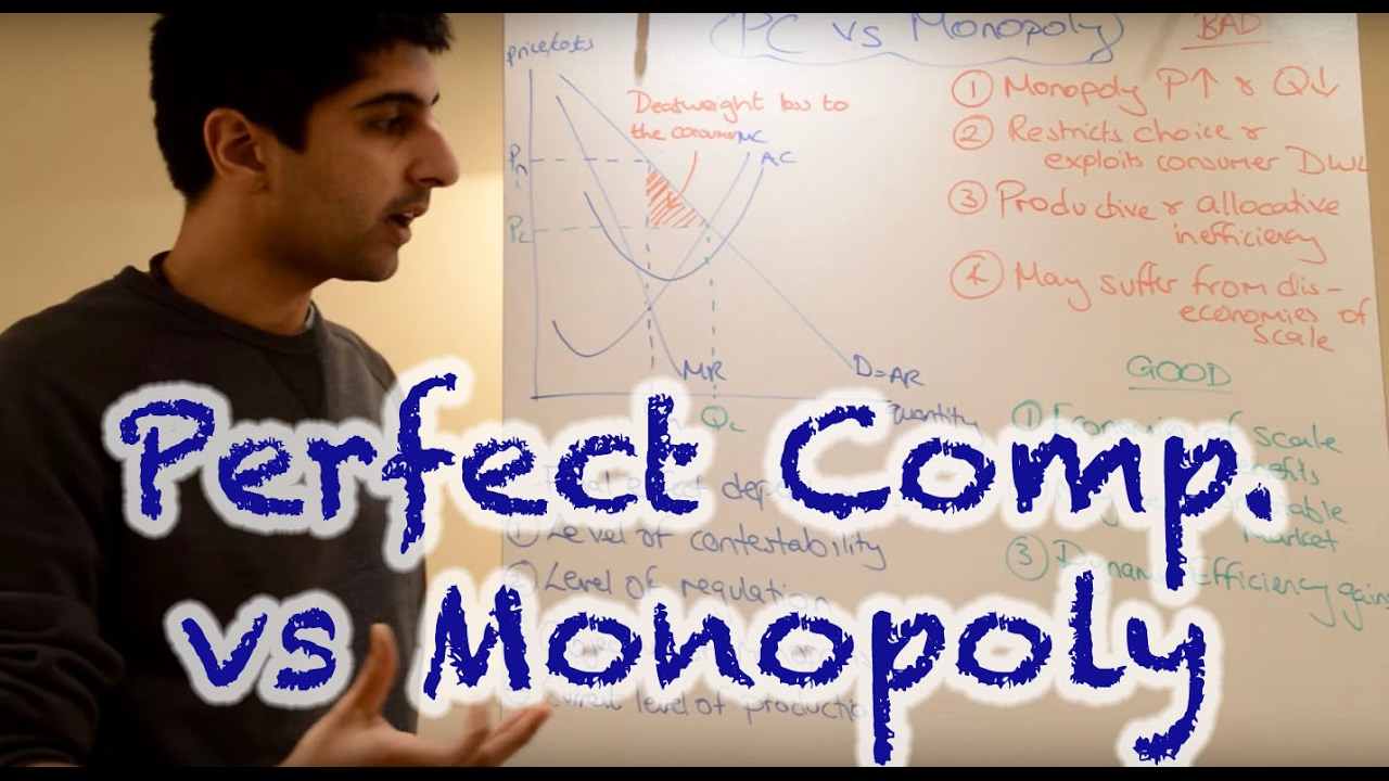 monopoly vs perfect competition essay