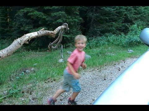 Kids Are Playing With Anaconda Snake - XciteFun.net