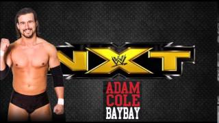 "Custom Wrestling Dream Theme Songs- Adam Cole NXT Theme ""Dirty Little Thing"" By Adelitas Way"