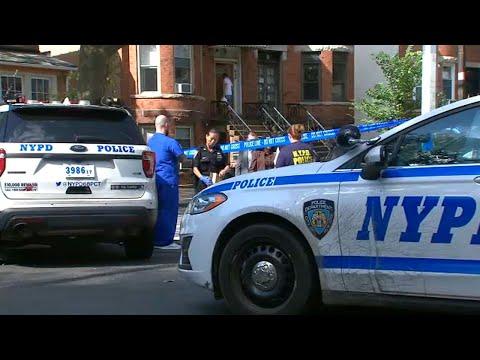 Man fatally shot while walking dog in NYC