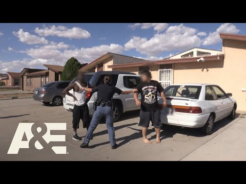 Live PD: Street Fighting (Season 3) | A&E