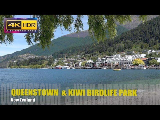 NEW ZEALAND / Queenstown / Kiwi Birdlife Park