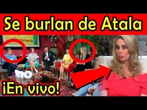Daniel Bisogno ¡ SE BURLA DE ATALA en programa EN VIVO de Ventaneando!