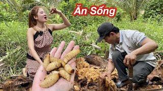 Ly Ngô Bắt Đuông Dừa Ăn Sống/ Đuông Dừa Lội Nước Mắm - Bắt Đuông Dừa Miền Tây