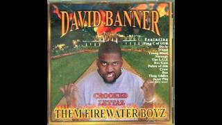 Watch David Banner If I Had A Choice video