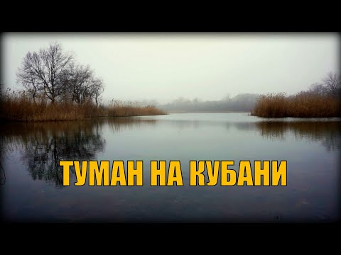 Влог | Туман на Кубани | Весной потянуло
