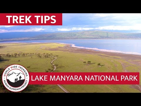 Lake Manyara National Park African Safari | Trek Tips