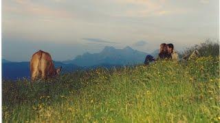Sommer in St. Johann in Tirol