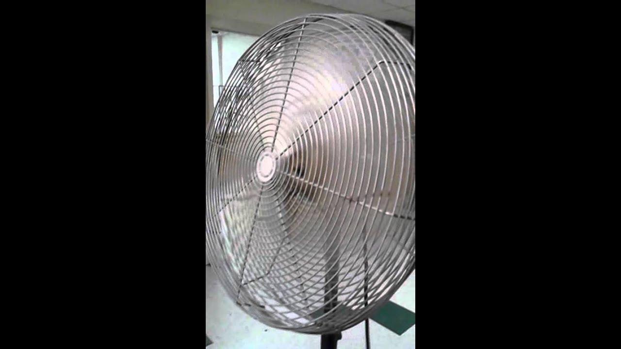 Dayton Commercial Pedestal Fan Youtube