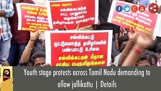 Youth stage protests across Tamil Nadu demanding to allow jallikattu | Details