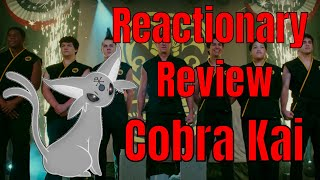 Cobra Kai: The Most Alpha Based TV Series of All Time: Reactionary Review: