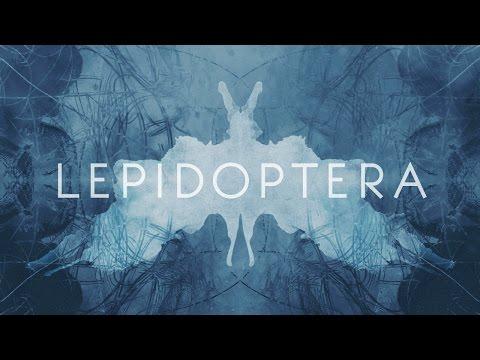Igrekzet x Cokebeatz - Lepidoptera