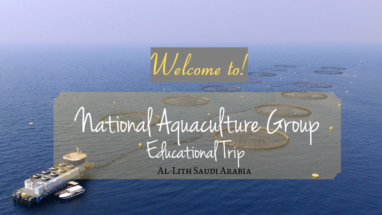 National Aquaculture Group Of Al Lith Saudi Arabia Youtube