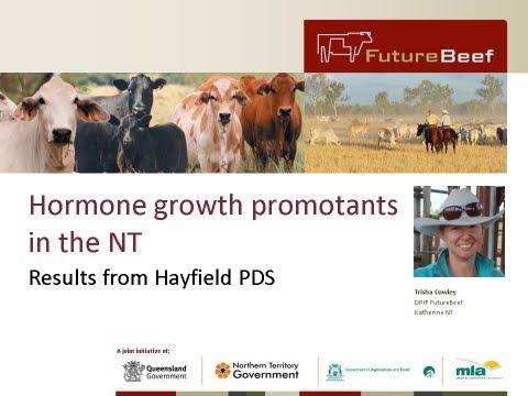 Hormone growth promotants (HGPs) in the NT