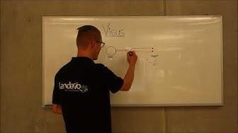 Landario erklärt - Visus