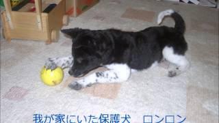 レインボータウンFM79.2~大江戸放送局~ 毎週月曜日 21:00~22:00 ラ...