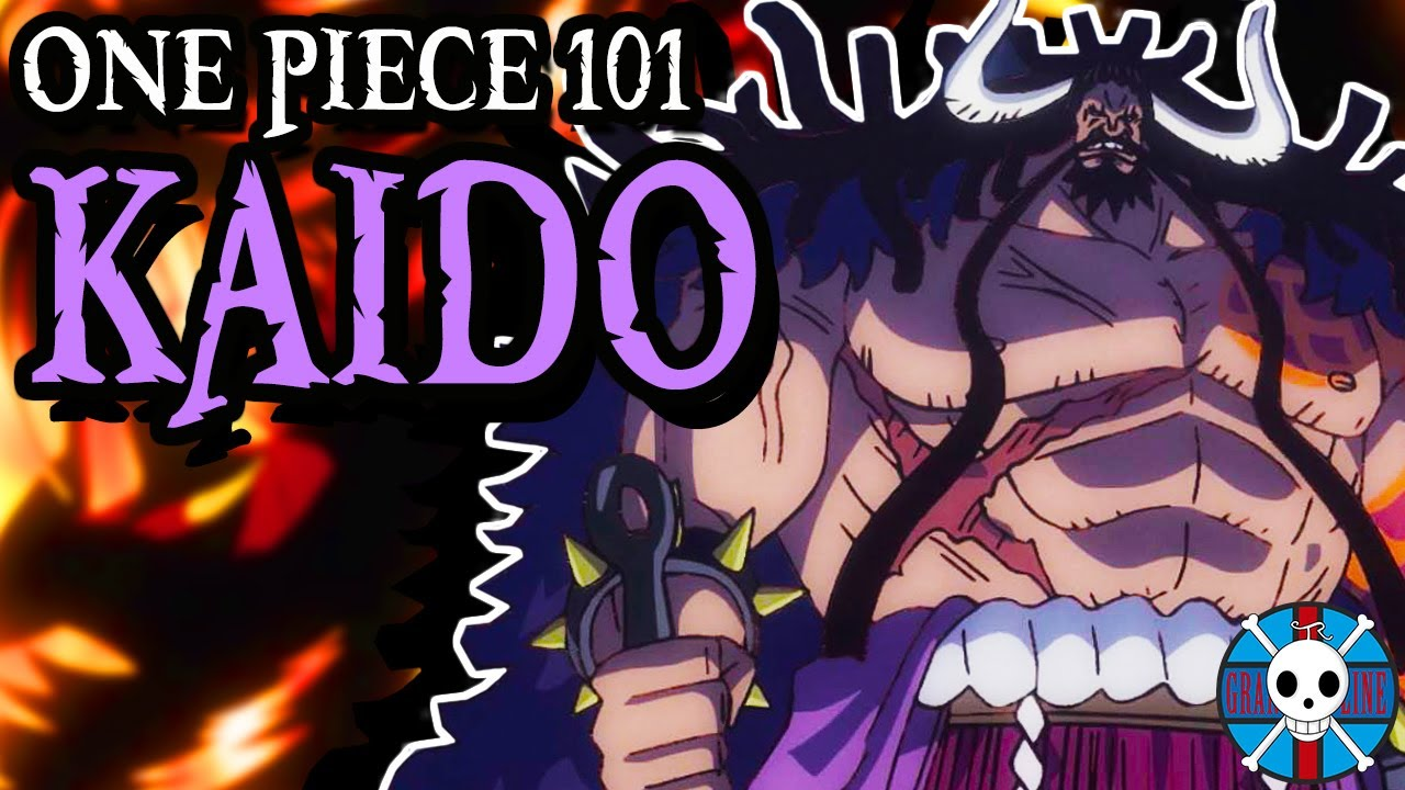 Download Kaido Explained   One Piece 101