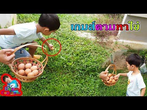 น้องบีม | ตามหาไข่ไก่ให้เจอ เกมส์สนุก สุดหรรษา กิจกรรมครอบครัว