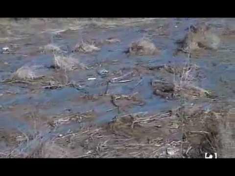 El gran secreto de la magia from YouTube · Duration:  54 minutes 20 seconds