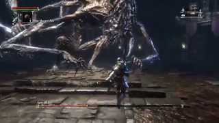 Bloodborne: Defiled chalice dungeon 2H Ludwig Amygdala boss safe strategy