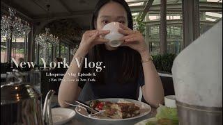 vlog | 뉴욕 랜선…