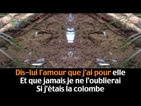 Vole colombe '' Isabelle Boulay''