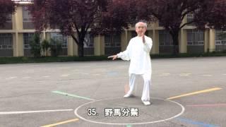 64式太極拳背向 (2014.05.17)