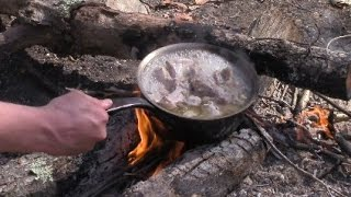 Rabbit Stew Lunch In The Forest