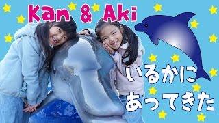 Kan & Aki イルカに会ってきたよ♪ thumbnail
