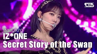 Secret Story of the Swan
