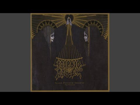 Too Extreme (Metallyzer Remix) mp3