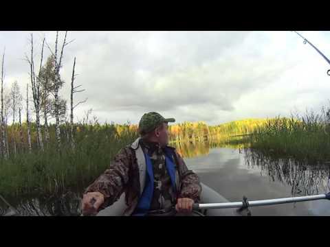 начало клева на озере