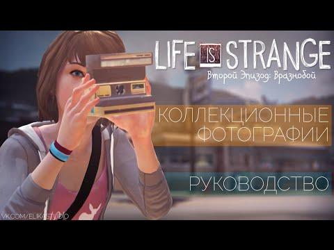 Коллекционные фотографии | Life is Strange ep. 2: Вразнобой [Руководство]