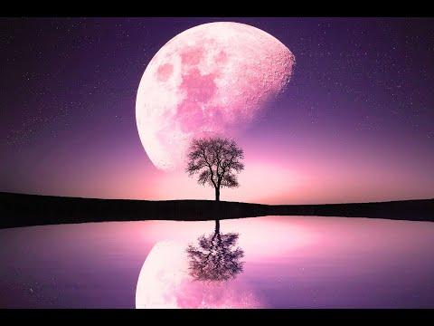 Relaxing Music for Deep Sleep. Delta Waves. Calm Music - Meditation Music - Yoga Music