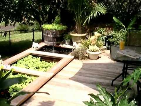 Garden Pond Designs Pictures