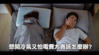 日本【大京電販】4D防螨涼感枕 (形像影片)