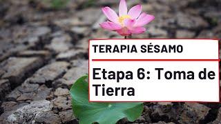 Etapa 6, Toma de Tierra - Terapia Sésamo.