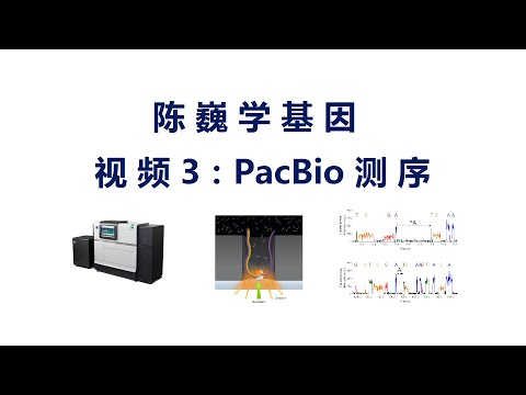 【陈巍学基因】 视频3:Pacific Biosciences Sequencing
