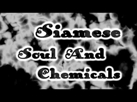 Siamese - Soul and Chemicals [Lyrics on screen]